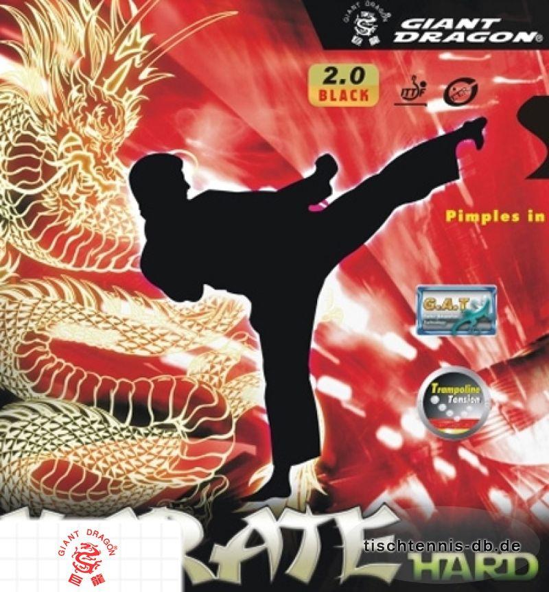 giant dragon karate hard